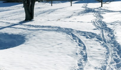 paths in snow2